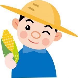 とうもろこし農家